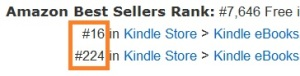 Amazon category ranking 2